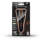 Steel Dartpfeil Set Target - Raymond van Barneveld Black Tungsten