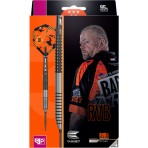Steel Dartpfeil Set Target - Raymond van Barneveld RVB G3