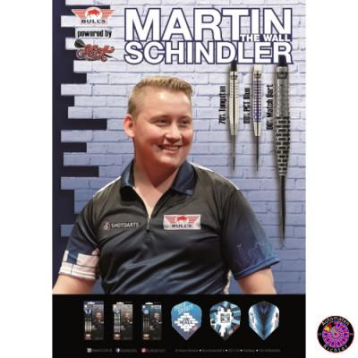Bulls Poster Martin Schindler
