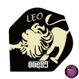 Constellation Flight Standard - Leo